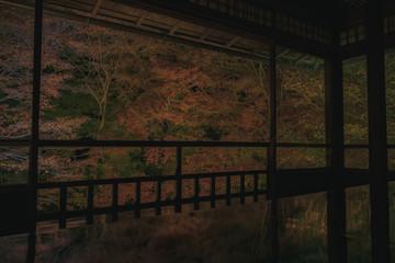 京都 瑠璃光院 お寺 紅葉 秋 写真素材 季節