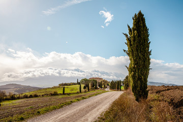 Tuscany  Pienza  Countryside Authentic Landscape