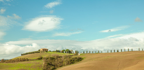 Tuscany Typical  Farmland and Countryhouses Landscape
