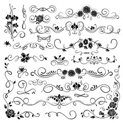 Set of ornamental filigree flourishes and thin dividers on white background