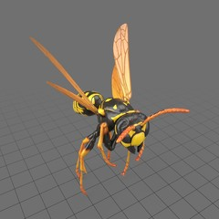 Paper wasp flying