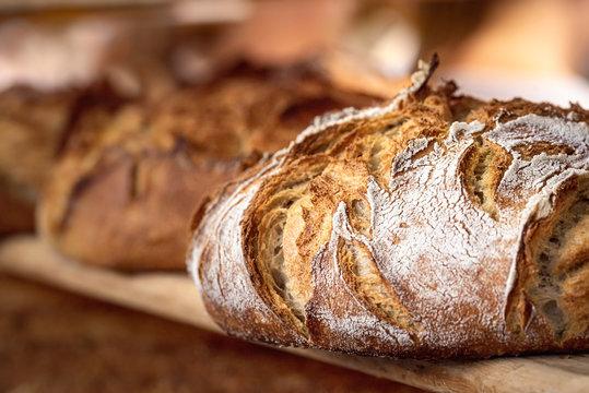Sourdough bread with crispy crust on wooden shelf. Bakery goods