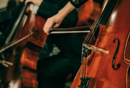 Symphony orchestra on stage, hands playing cello