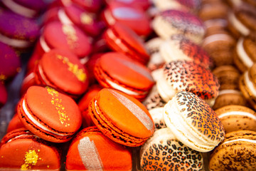 Colored french macaroons in a shop window.