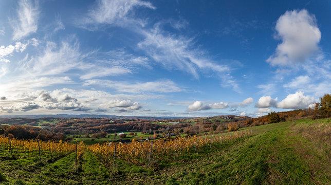 Donzenac (Corrèze, France) - Vignoble en automne