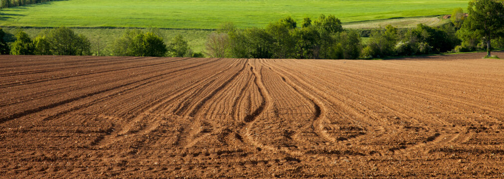 Champ et terre agricole en campagne Française
