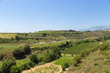 Elvillar, Spain. Typical summer rural landscape