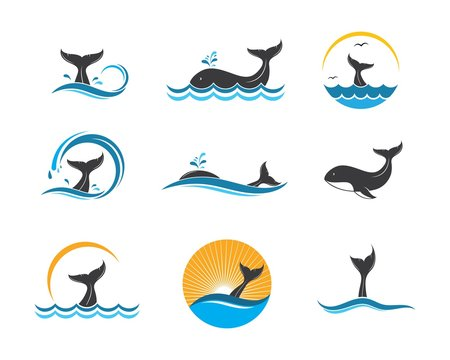 whale tail icon vector illustration design