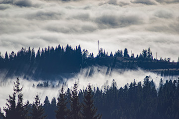 Aluminium Prints Morning with fog Carpathian mountains in the waves of fog