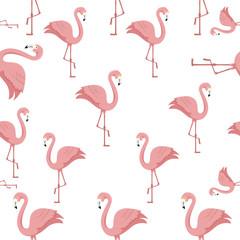 Tuinposter Flamingo background of flamingos pink animals exotic vector illustration design