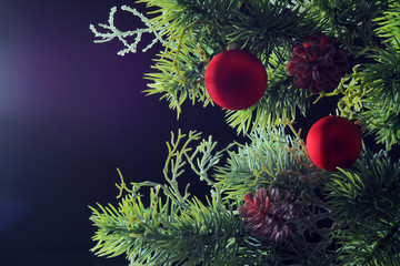 New Year picture. Fir branch with Christmas toys on a dark background