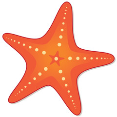 Starfish. The silhouette of a starfish coral color isolated on a white background. Star icon in cartoon style. Summer, vector illustration.