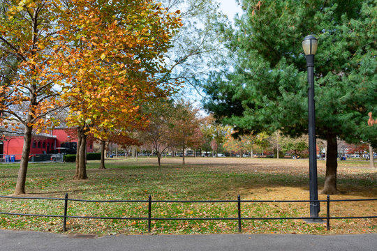 McCarren Park Autumn Scene with a Street Light and Trees in Williamsburg Brooklyn New York