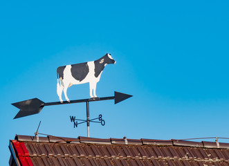 Wind direction, weather, Germany - A weather vane with the picture of a cow, on a day with blue sky without clouds.