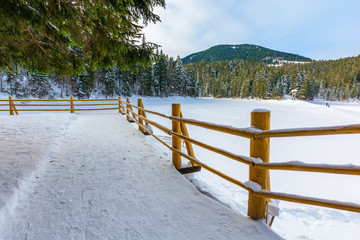 fence on the wooden pier on the lake. wonderful sunny weather in winter. frozen lake synevyr covered with snow. spruce forest on a shore around. transcarpathia destination scenics