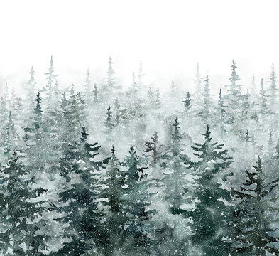 Watercolor winter pine tree forest background. Hand painted conifer spruce trees with falling snow. Nature landscape scene with trees and fog. Christmas themed design.