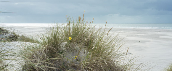 Wall Mural - Breiter Strand an der Nordsee