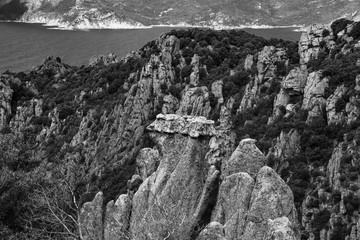 Papiers peints Gris traffic Le littoral et la montagne Corse