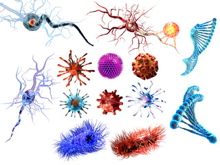 Virus, bacteria, dna, nerve cells. large collection. Detailed medical illustration isolated on white background. 3d render
