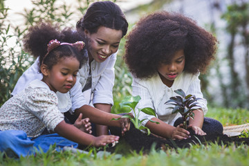 Fototapeta Save world concept - Mother and daughter are planting fun little trees on the fence of his house. obraz