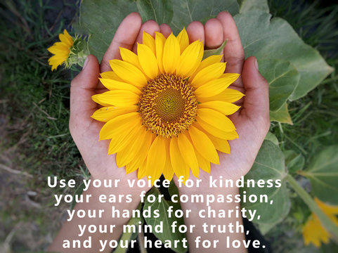 Inspirational quote - Use your voice for kindness, your ears for compassion, your hands for charity, your mind for truth, and your heart for love, With background of beautiful sunflower  in hand.