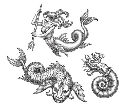 Hand drawn illustration in the engraving  style, fantastic sea animals and mermaid.