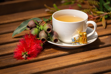 A cup of christmas tea with gum blossom and gum nuts, Australian christmas scene