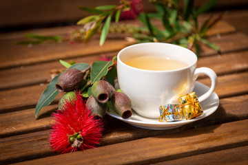 A cup of christmas tea with gum blossom and gum nuts, Australian christmas