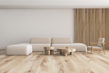 White and wood living room with sofa and armchair