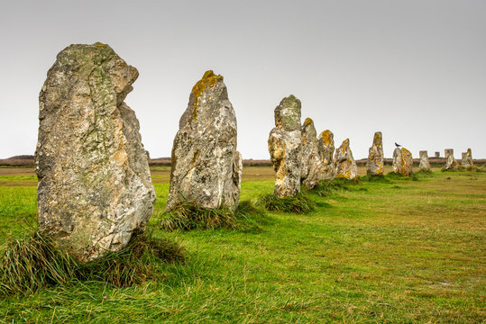 Standing stones in Brittany. Alignment of menhirs on a green meadow and under a gray sky.