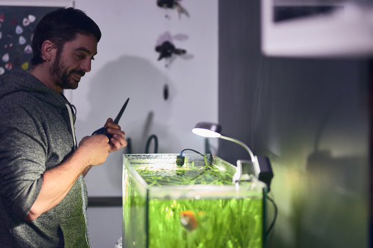 Young smiling boy looking at his aquarium with pruning scissors in his hands.