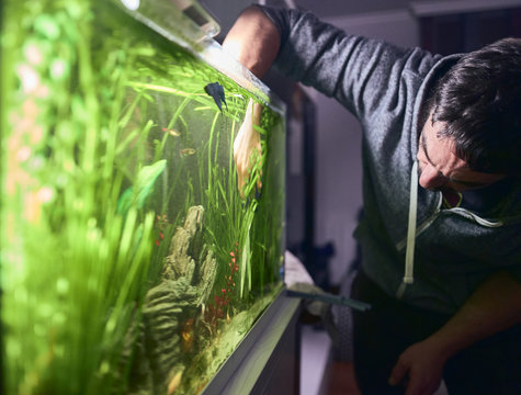 Young man pruning the plants in his aquarium.