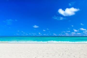 beautiful beach and tropical sea. travel landscape