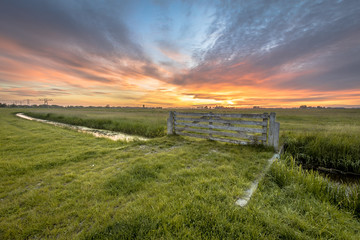 Wall Mural - View of fence in dairy farmland
