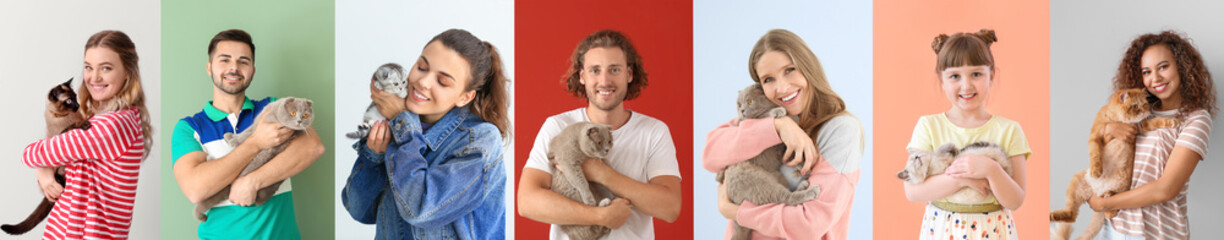 Collage with different people and their cute cats on color background