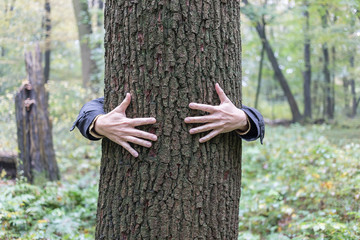 tree_hugging