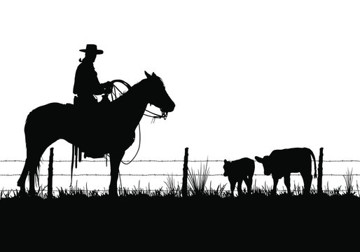 A vector silhouette of a working ranch cowboy on a horse with two young cows.