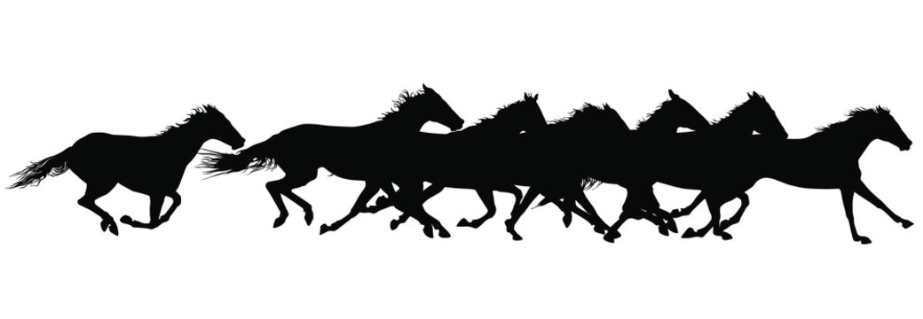 Vector silhouettes of horses running.
