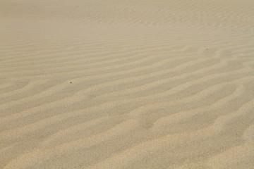Arena de desierto
