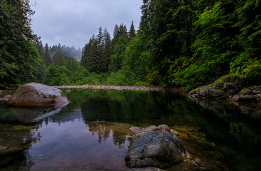 Pine trees reflecting in the crystal clear water of a lake on a cloudy day in Lynn Canyon Park forest, Vancouver, Canada Fotobehang