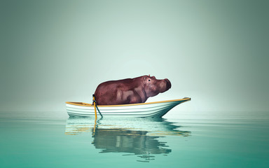 hippo in a boat Wall mural