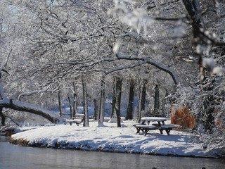 Winter scene at the park by the pond, with the trees and the benches covered in ice and snow