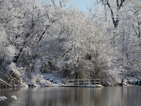 Wide view of wooden dock floating in the pond with a beautiful background of ice and snow-covered trees