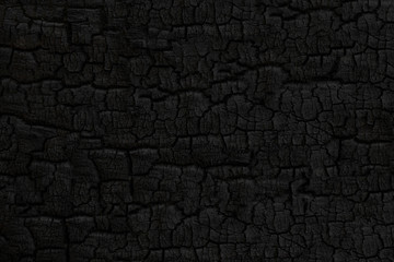 Poster Firewood texture Wood charcoal texture. Burnt tree. Black coal background