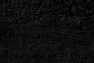 Wood charcoal texture. Burnt tree. Black coal background