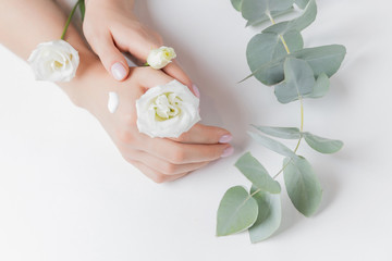 Woman applying hand cream flowers eucalyptus on white background, top view. Concept cosmetic body care, anti-wrinkles, anti-aging spa