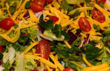 Gemüsesalat aus tomaten rucola und paprika