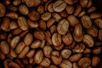 Selecting coffee beans thoroughly, picture on a black background