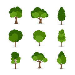Foto auf AluDibond Weiß Green tree Fertile A variety of forms on the White Background,Set of various tree sets,Trees for decorating gardens and home designs.vector illustration and icon