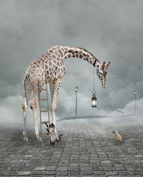 Find a friend – Surreal conceptual illustration of a giraffe meeting a baby chicken